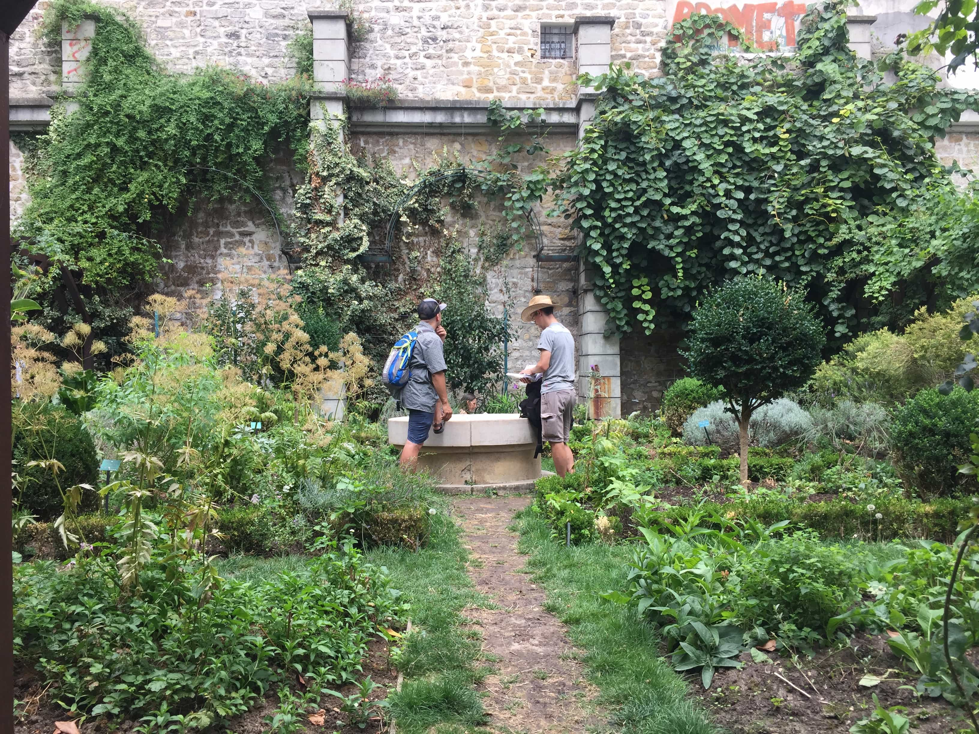 Garden in the middle of no where/Paris