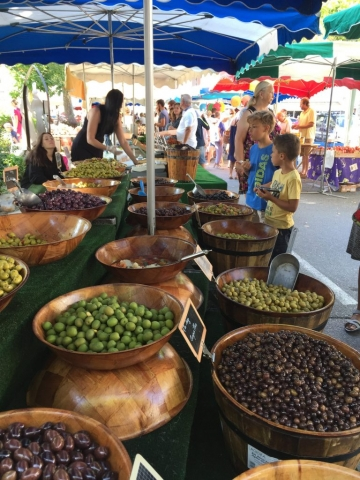Olives for days in Castellane