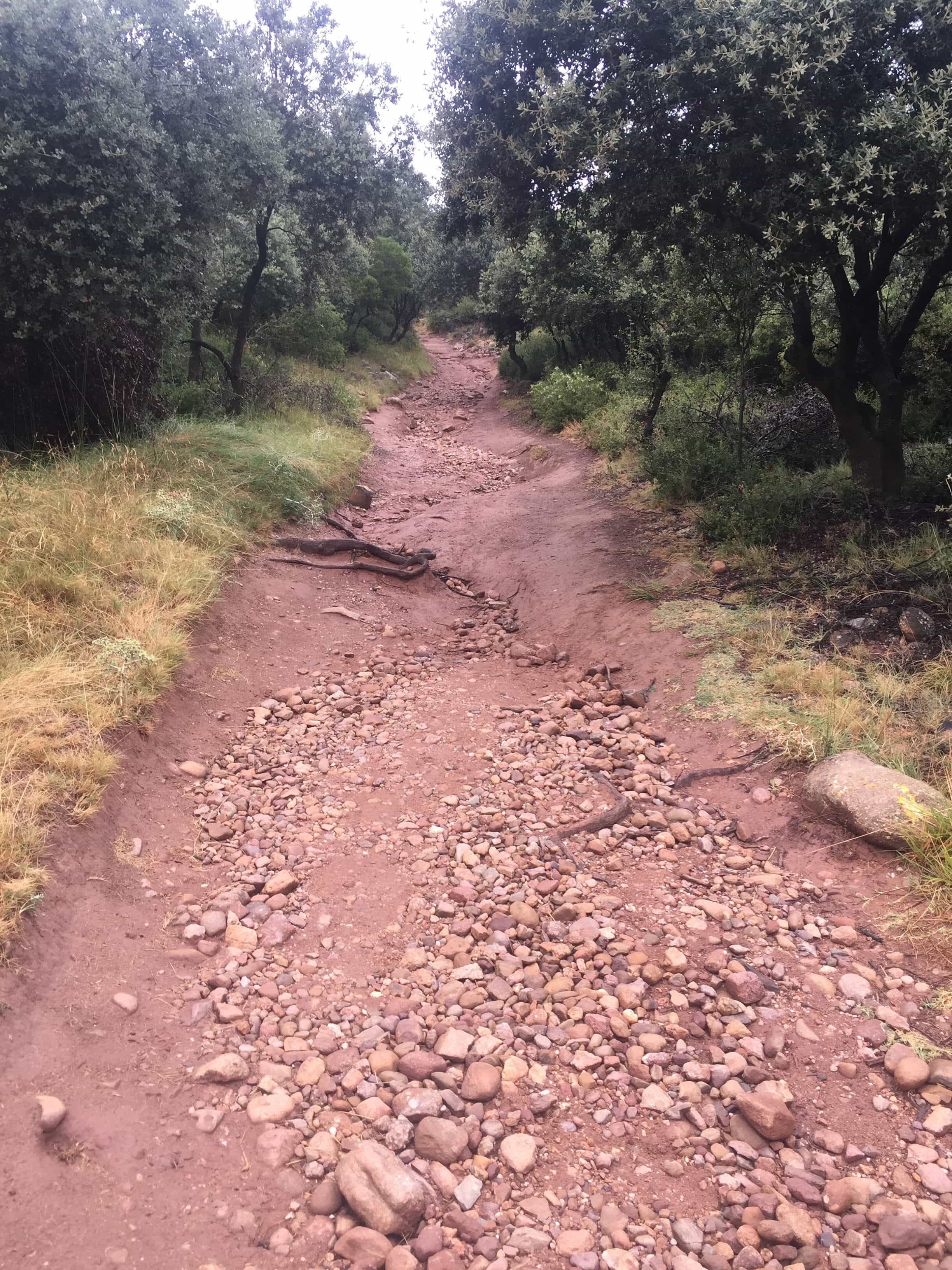 This is the way. Some paths are more like a river bed going uphill