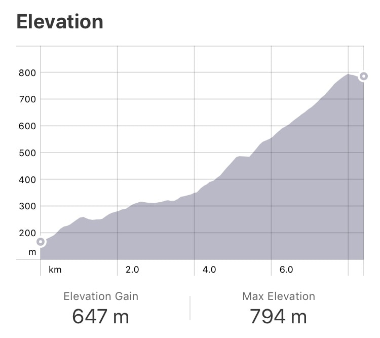 Strava: SJPDP to Orisson Elevation