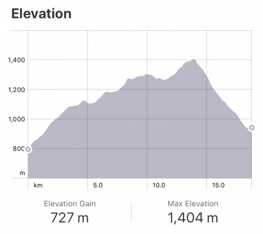 Strava: Orisson to Roncesvalles elevation