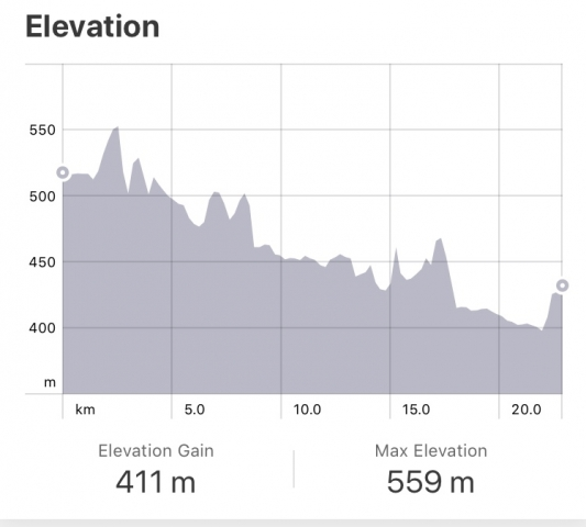 Strava: Zubiri to Pamplona Elevation