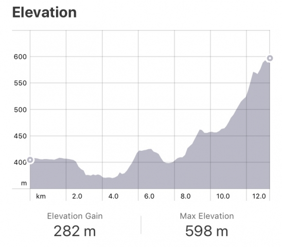 Strava: Pamplona to Zariquiegui Elevation