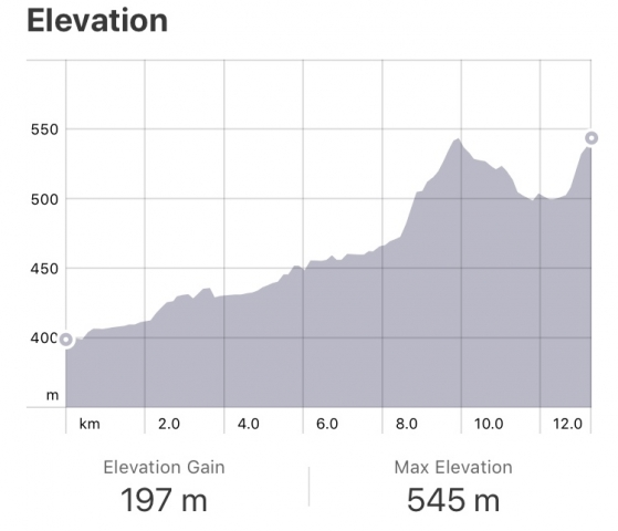 Strava: Logrono to Navarette Elevation