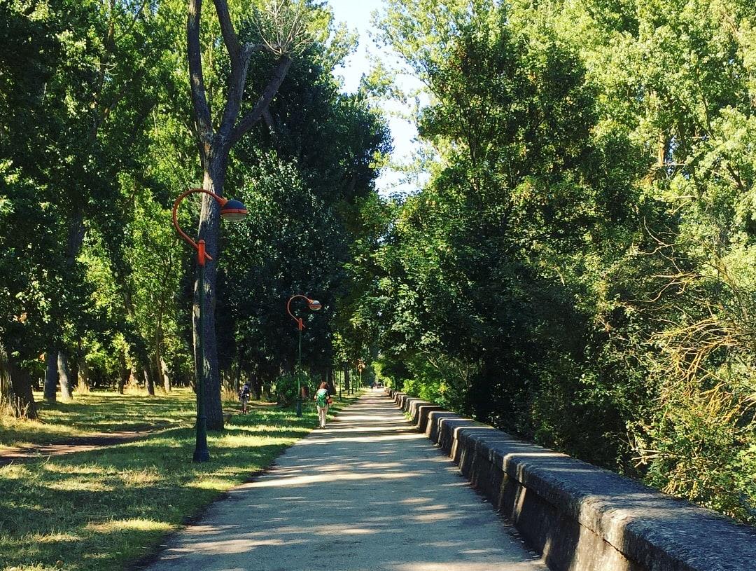 gorgeous walk into Burgos