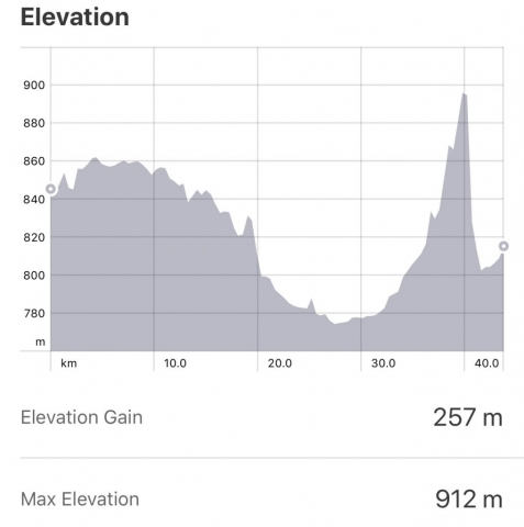Strava: Bercianos del Real Camino to Leon Elevation