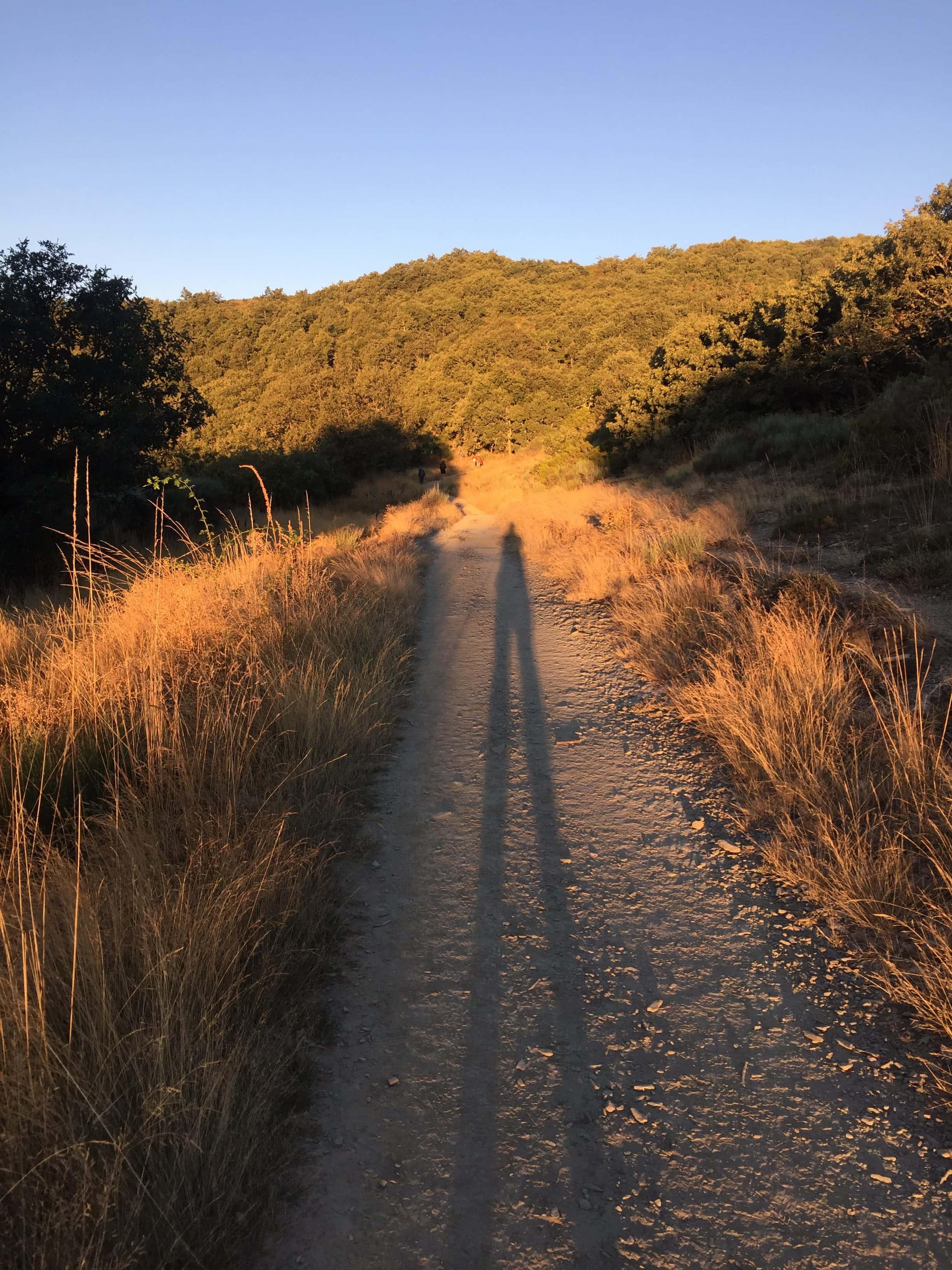 Love the early morning walks with LOOOOOOng shadows