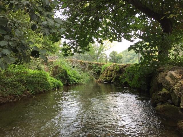 River in Las Herrerias