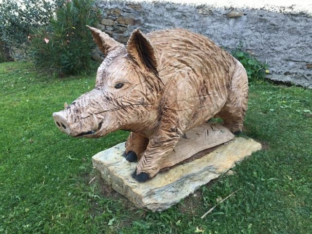 wild wooden boars