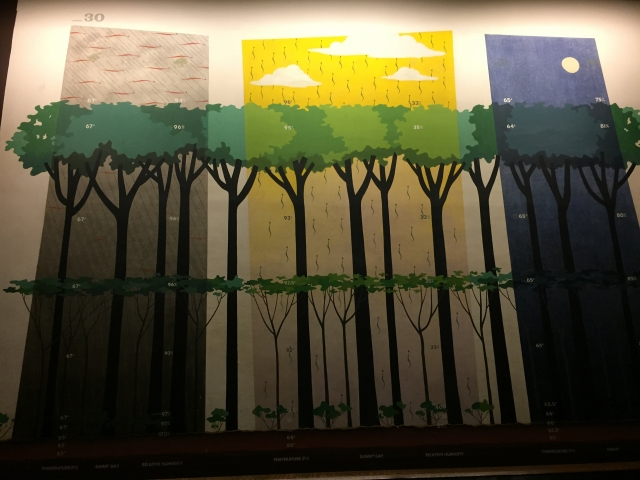 In the Museum of Natural history: the different layers of the forest