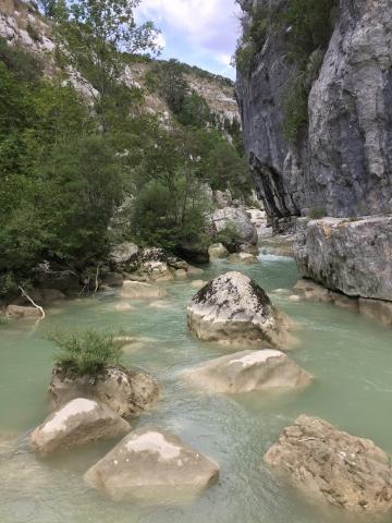River water at the Canyon