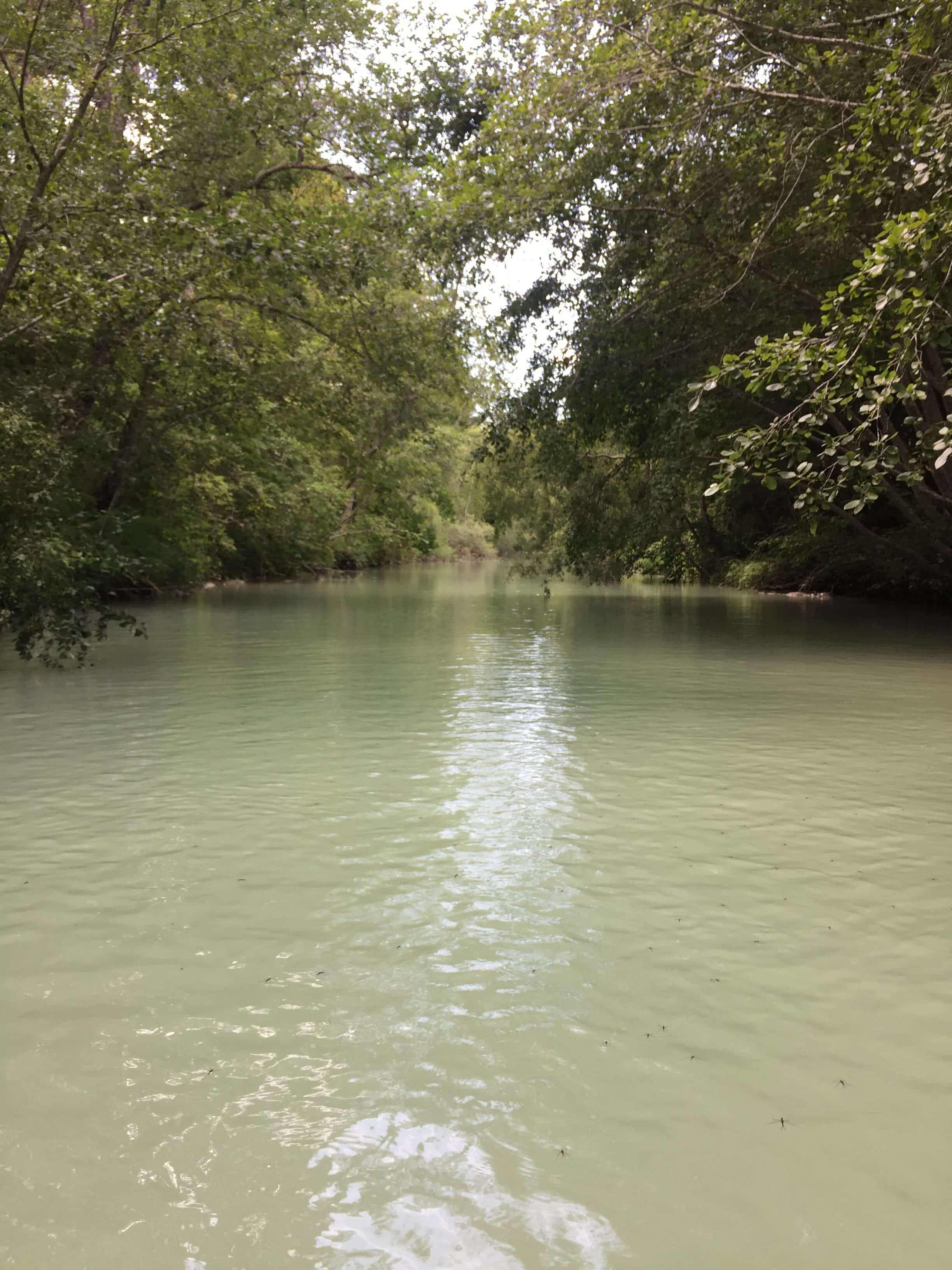 Where we dunked in the river