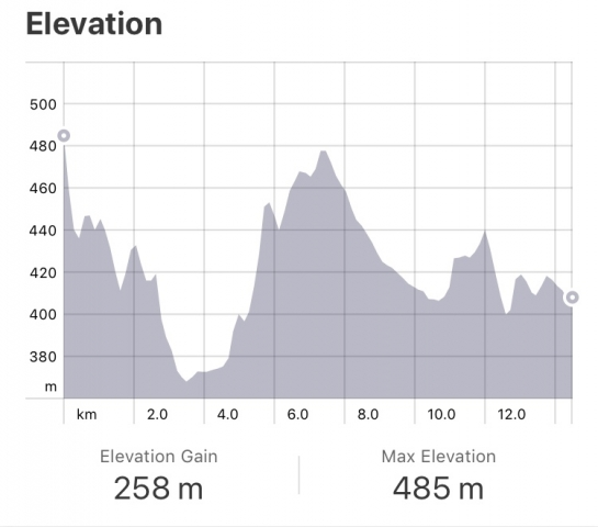 Strava: Ciraqui to Estella Elevation
