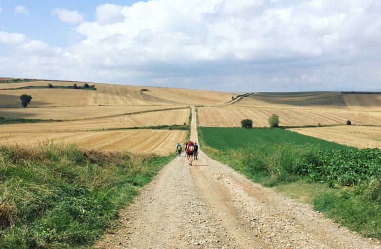 Camino: Day 13-15