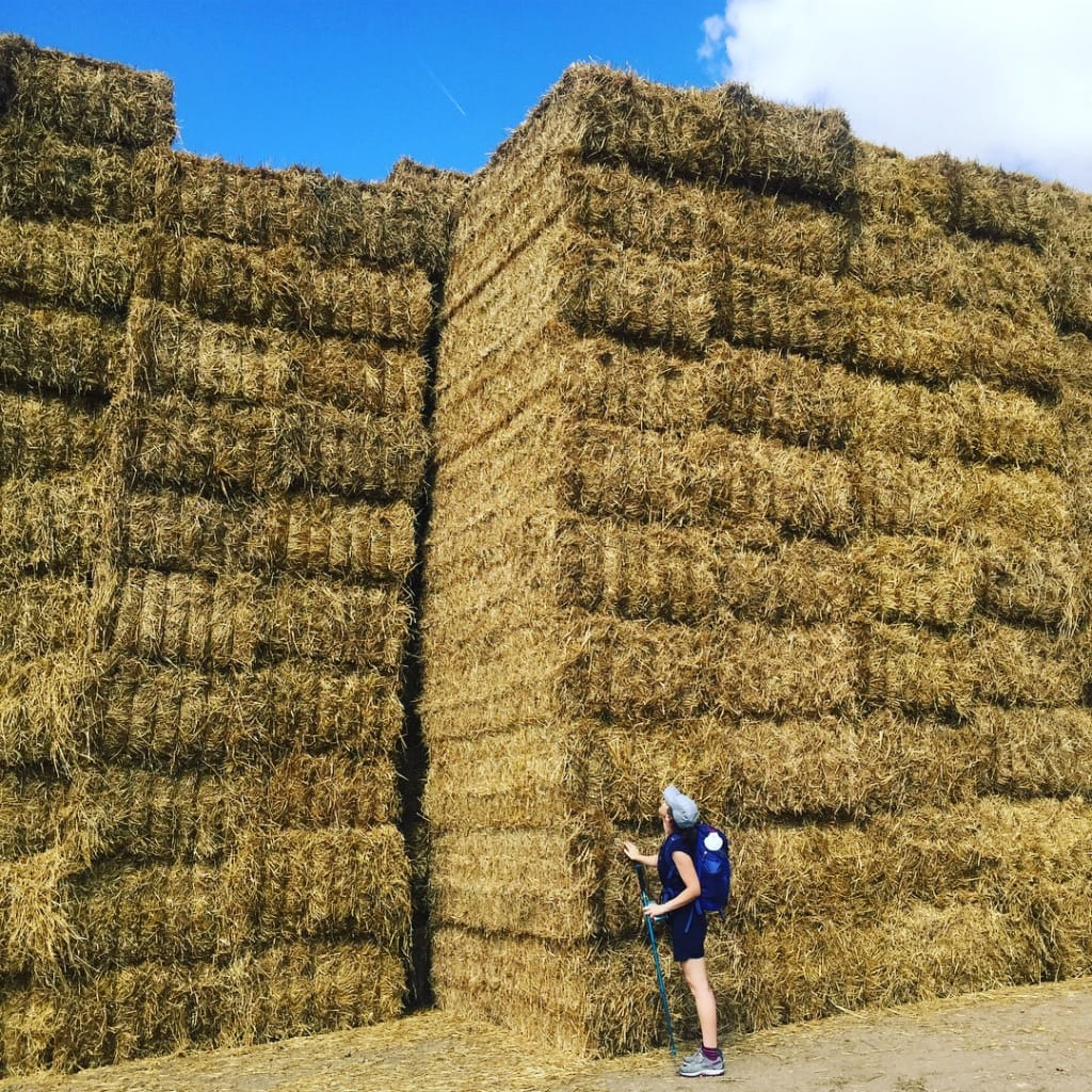 Incredible hay stacks and Feena!