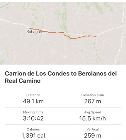 Strava: Carrion de Los Condes to Bercianos del Real Camino