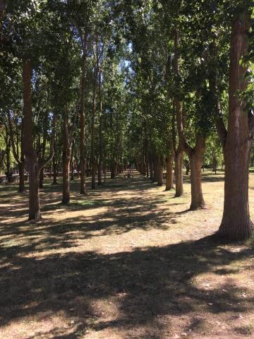 Park space