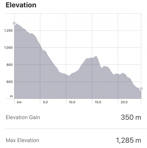 Strava: Fonfria to San Mamede de Camino Elevation