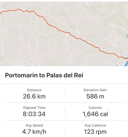 Strava: Portomarin to Palas del Rei