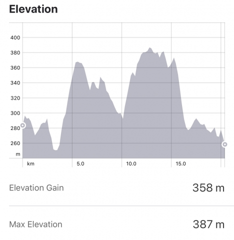 Strava: O Pedrouzo to Santiago Elevation