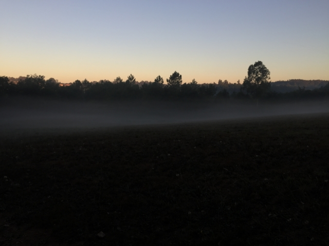 Sun rise over misty fields