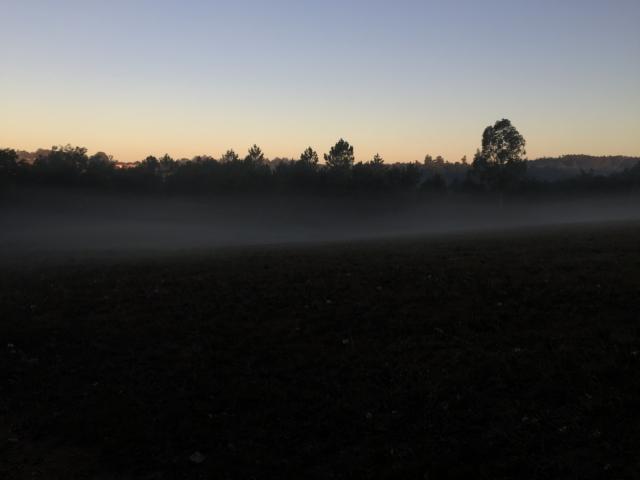 Sun rise over misty fields