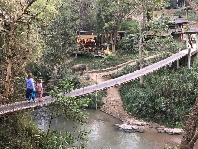 The bridge to elephantville