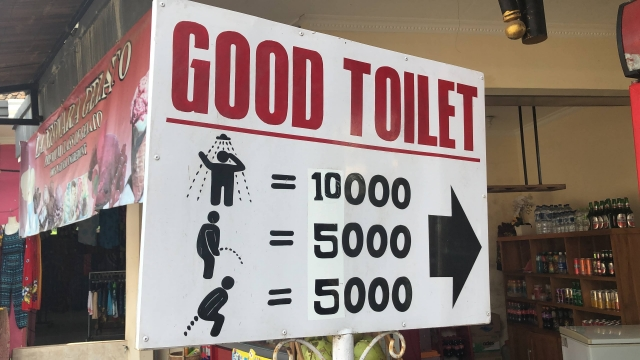 A good toilet - not a bad toilet