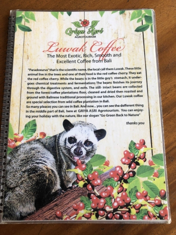 Luwak Coffee info