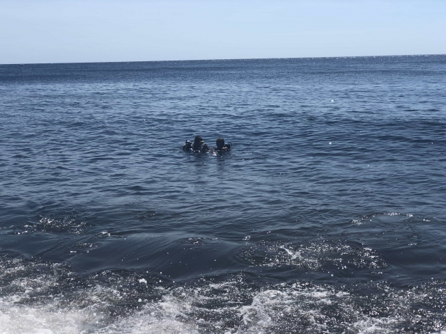 Into the ocean!