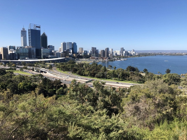 Views from Kings Park