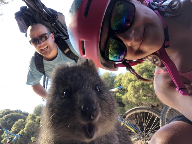Quokka selfie taken by Vivi!