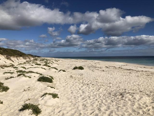 Beautiful white sand vacant beach