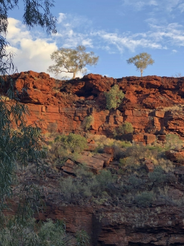 Sunset colours over Dales Gorge